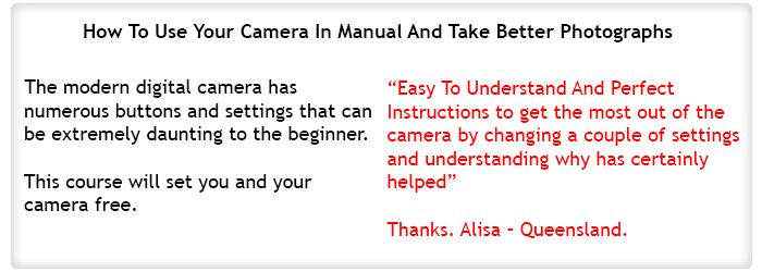 How To Use Your Camera In Manual And Take Better Photographs